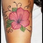 flor susana brazo (Custom)